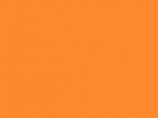 Spectrum pumpkin N60