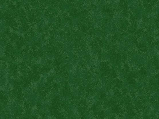 Spraytime chrismas green