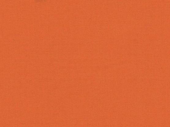 Anni Bündchen orange