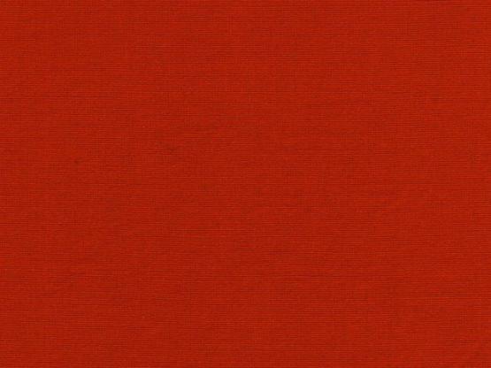 Anni Bündchen rot