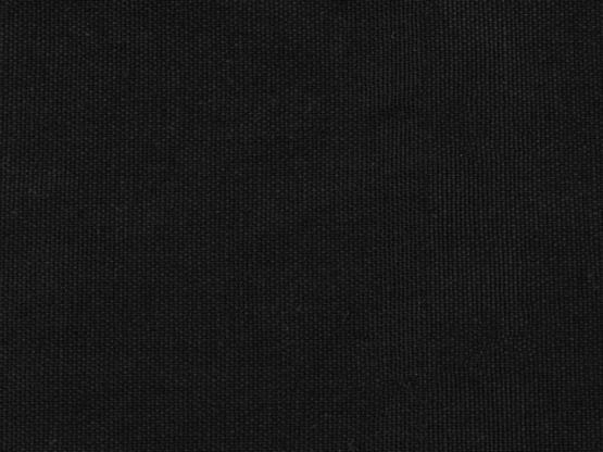 Calvin Canvas schwarz