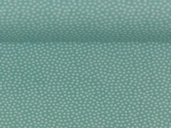 Dotty mint