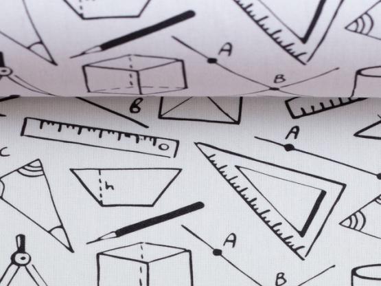 Kim Geometrie weiss